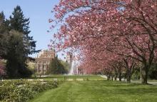 UW campus in Seattle